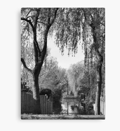 Behind the gardens Canvas Print