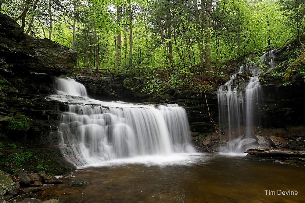 R. B. Ricketts Falls by Tim Devine