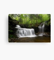 R. B. Ricketts Falls Canvas Print