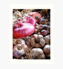 Onions & Garlic Art Print
