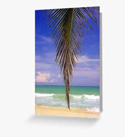 Shady Palm, Puerto Rico  Greeting Card