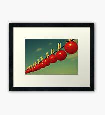 Sun dried tomatoes Framed Print