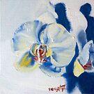 How doth the little orchid grow... by Helen Imogen Field