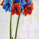 Dropping color - nine amarillis by Helen Imogen Field