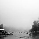 A misty evening by the lake by rickvohra