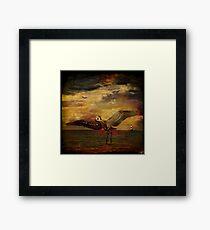 Herons Framed Print