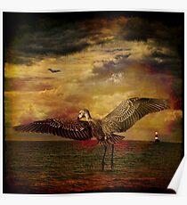 Herons Poster