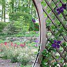 Secret Garden 1 by Hank Eder
