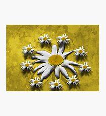 Flowers around Photographic Print