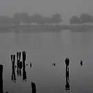 Across the Inlet by Barry Doherty