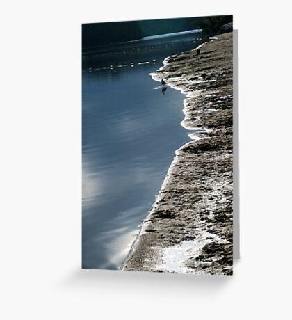 Shore's Edge Greeting Card