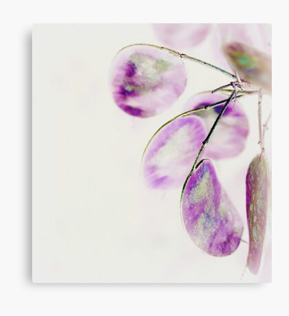 Inverted honesty Canvas Print