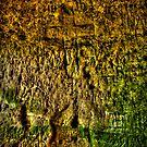 Hermitage Chapel Cross HDR  by Richard Jackson