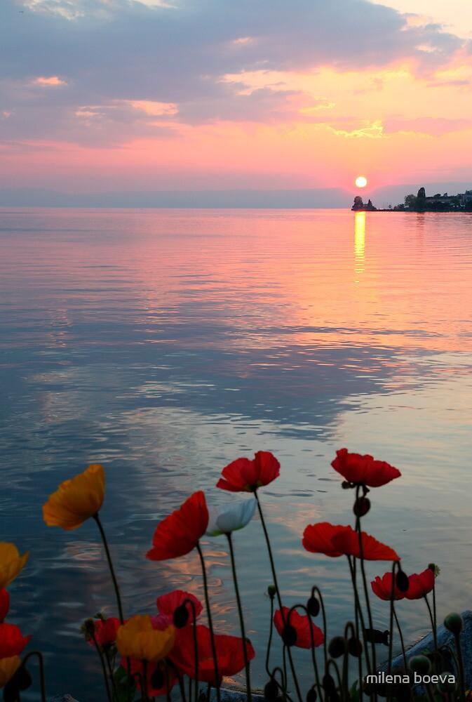 sunset  by milena boeva