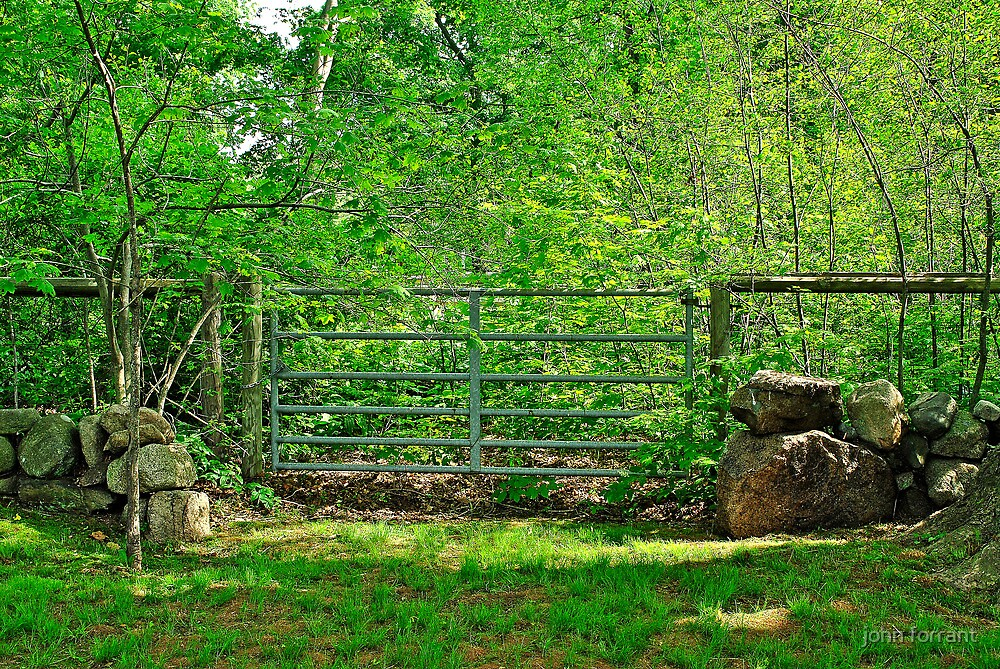 metal and rock fence by john forrant