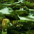 Baptismal Rocks by Michael  Dreese