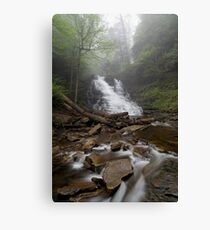 Foggy F. L. Ricketts Canvas Print