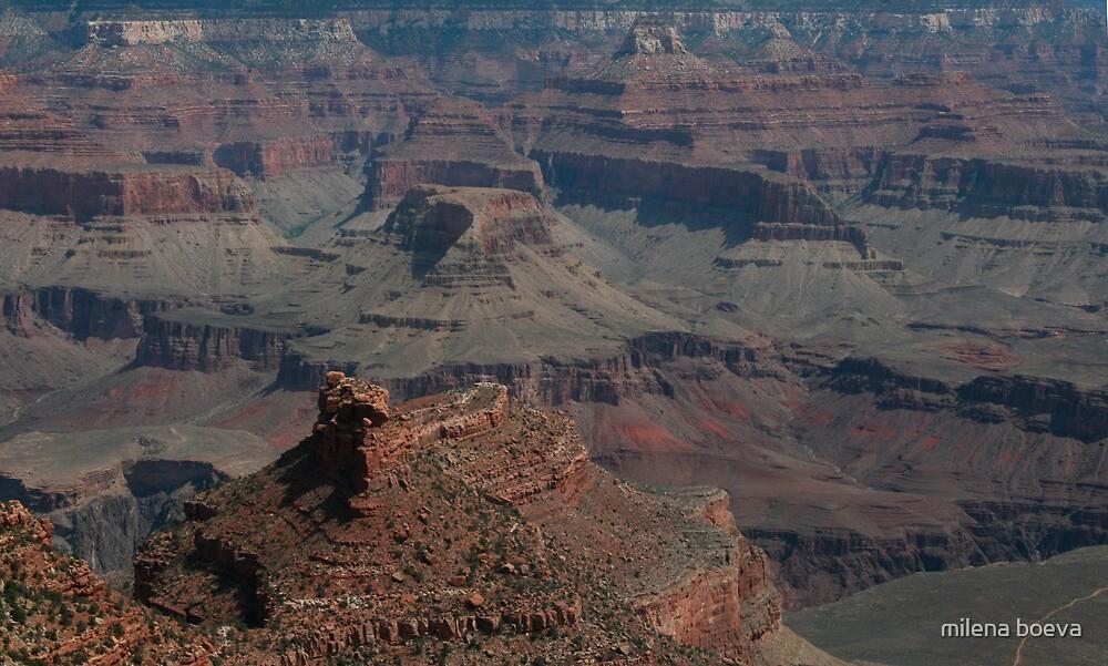 grand canyon by milena boeva