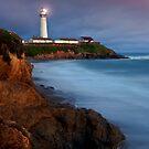 Pigeon Point Sunset by MattGranz