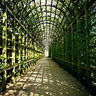 Within Queen Mary's Bower - Hampton Court Palace by Sherie LaPrade