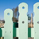Sunny Fence by Orla Cahill Photography
