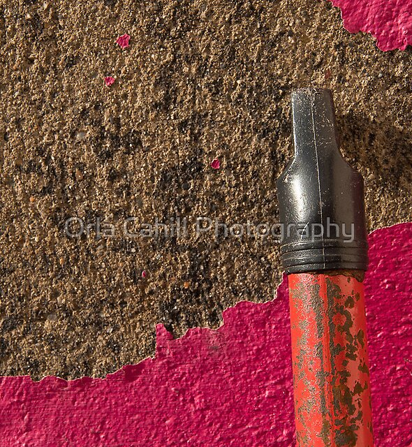 Peeling Pink & Red by Orla Cahill Photography
