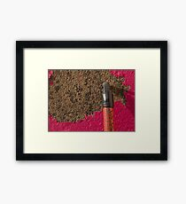 Peeling Pink & Red Framed Print
