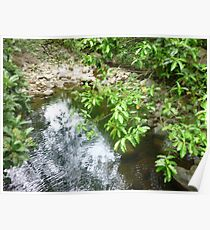 shimmering white cool pool in jungle mountain trail Poster