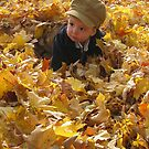 Puddle Of Leaves by Lana D'Attilio