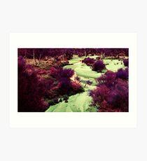 'Purple Valley' Art Print