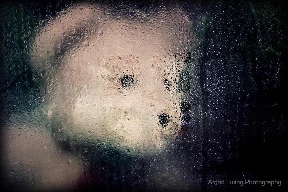 The best laid plans of teddies and men... by Astrid Ewing Photography