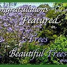 Tree,Beautiful Trees Banner by waxyfrog