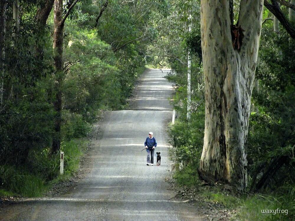 Walking the dog by waxyfrog