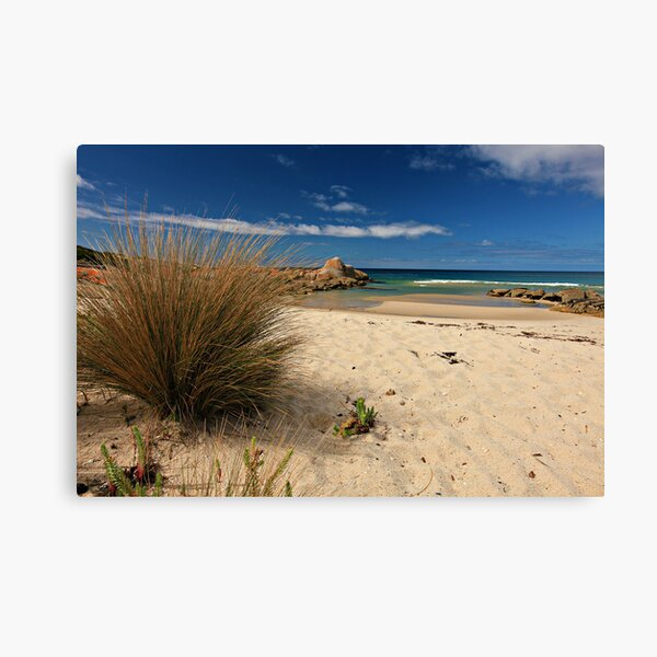 North-East Point - Flinders Island, Tasmania Canvas Print