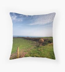 """An """"Alderney Stone"""" - Andy Goldsworthy Throw Pillow"""