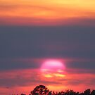 Texas Sunset #2 by Jamie  Armbruster