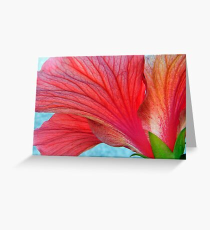 The Backside Greeting Card