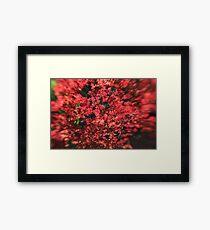 I am Red Framed Print
