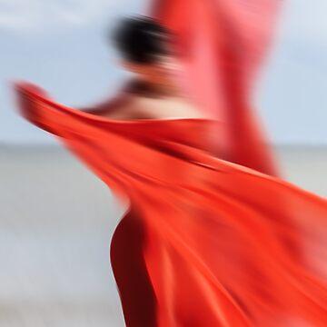 Wind by palinchak