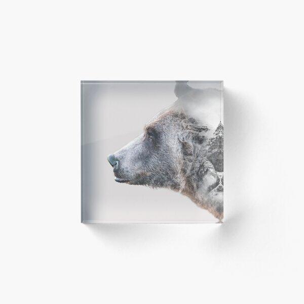 BEAR EXPOSURE Acrylic Block