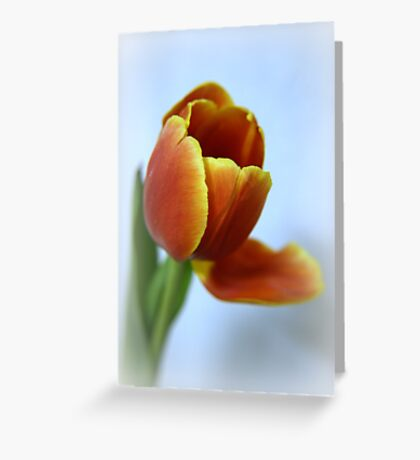 With arms wide open Greeting Card