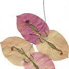 Stitched Flowers 2 by Narani Henson