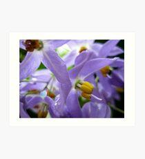 purplelove Art Print