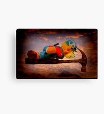 Planking Bill from Bunnings Canvas Print