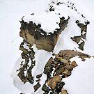 View from Trollsteinen by Algot Kristoffer Peterson