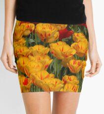 Mass of spring colour - Tulips in London Mini Skirt