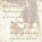 Dandelions by DreamCatcher/ Kyrah