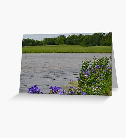 Peaceful Day While the Wind Blows Greeting Card