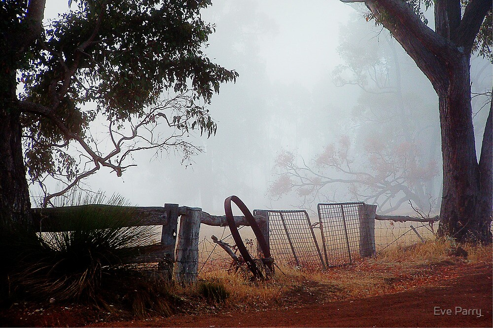 View from my front gate by Eve Parry