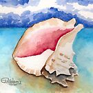 Conch Shell by Mitch Adams